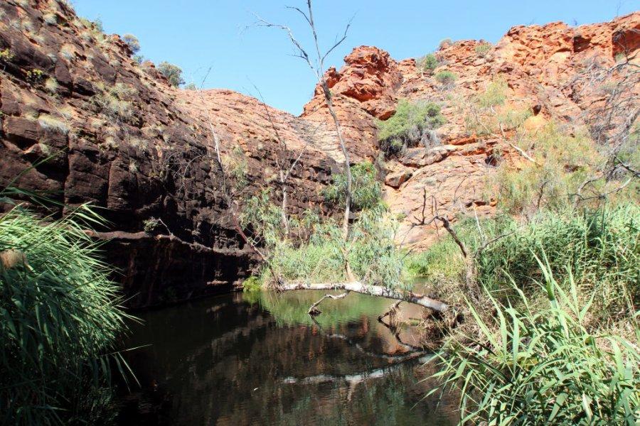 Australia0172_KingsCanyon_KathleenSpringsWalk