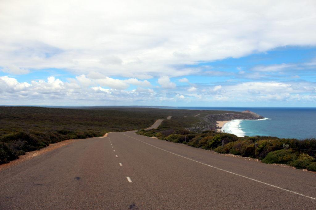 Australia1905_KangorooIsland_FlindersChaseNationalPark