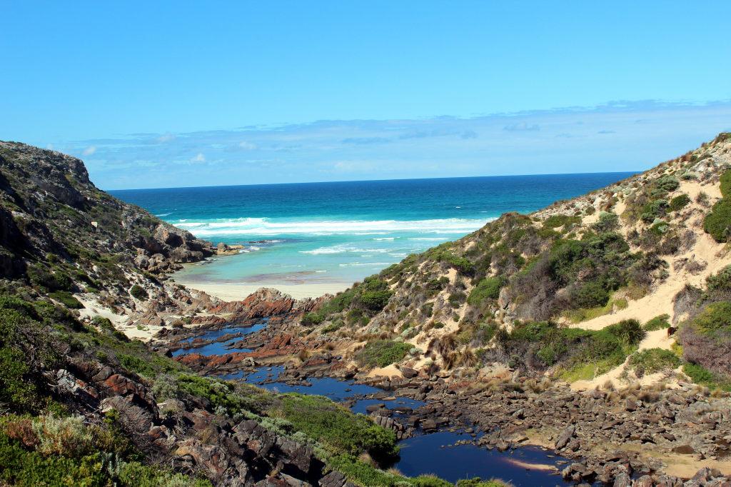 Australia2117_KangorooIsland_FlindersChaseNationalPark_SnakeLagoonHike