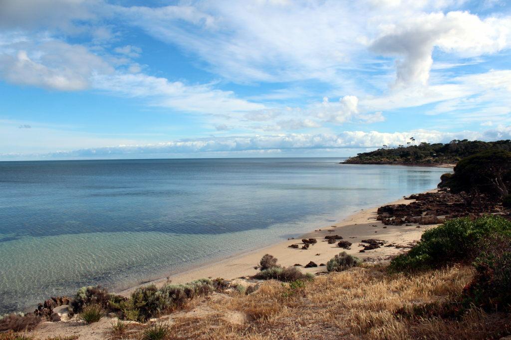 Australia2416_KangorooIsland_BrownBeach
