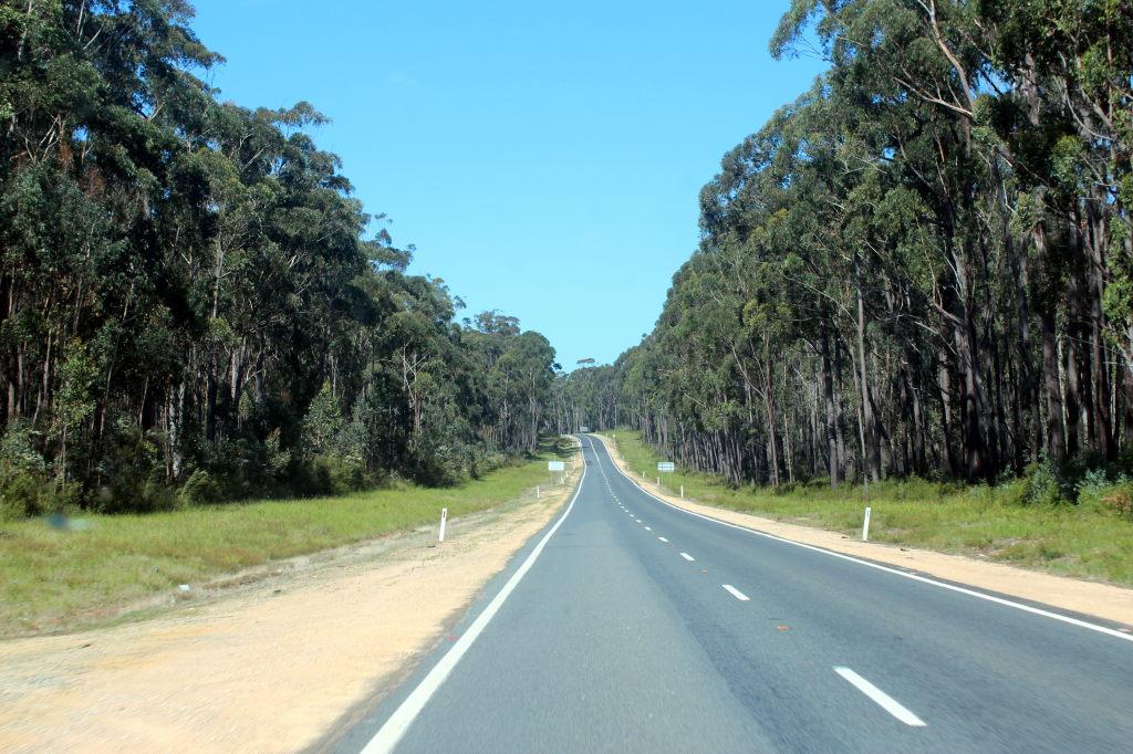 Australia4602_PrincessHwy