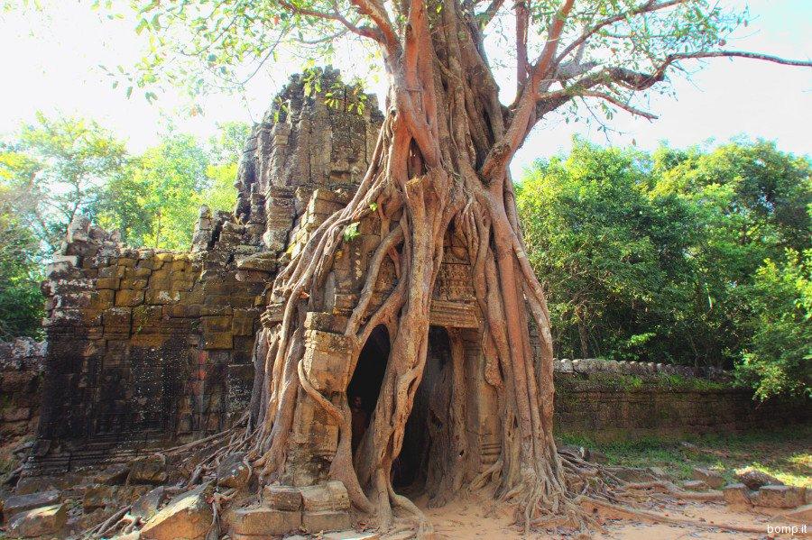 cambogia1462_angkor_tasom