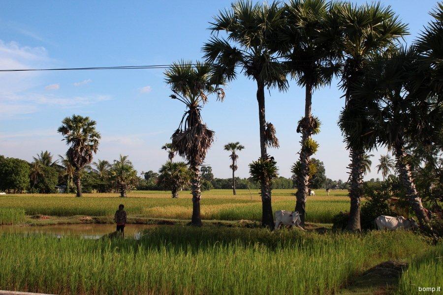 cambogia2057_kep