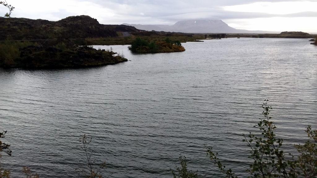 Islanda_20190907_183526_Myvatn_HöfðiForest