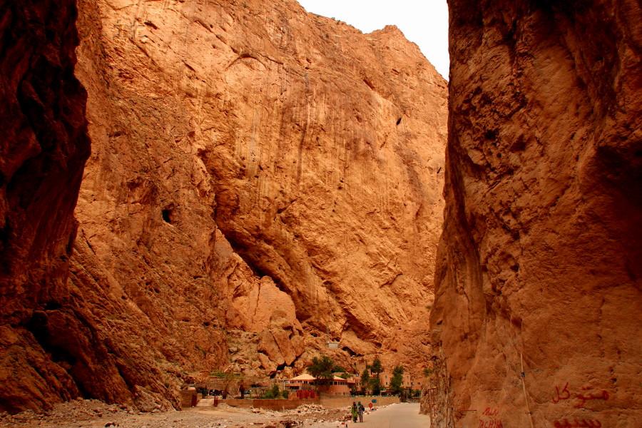 marocco0268_goleditodra
