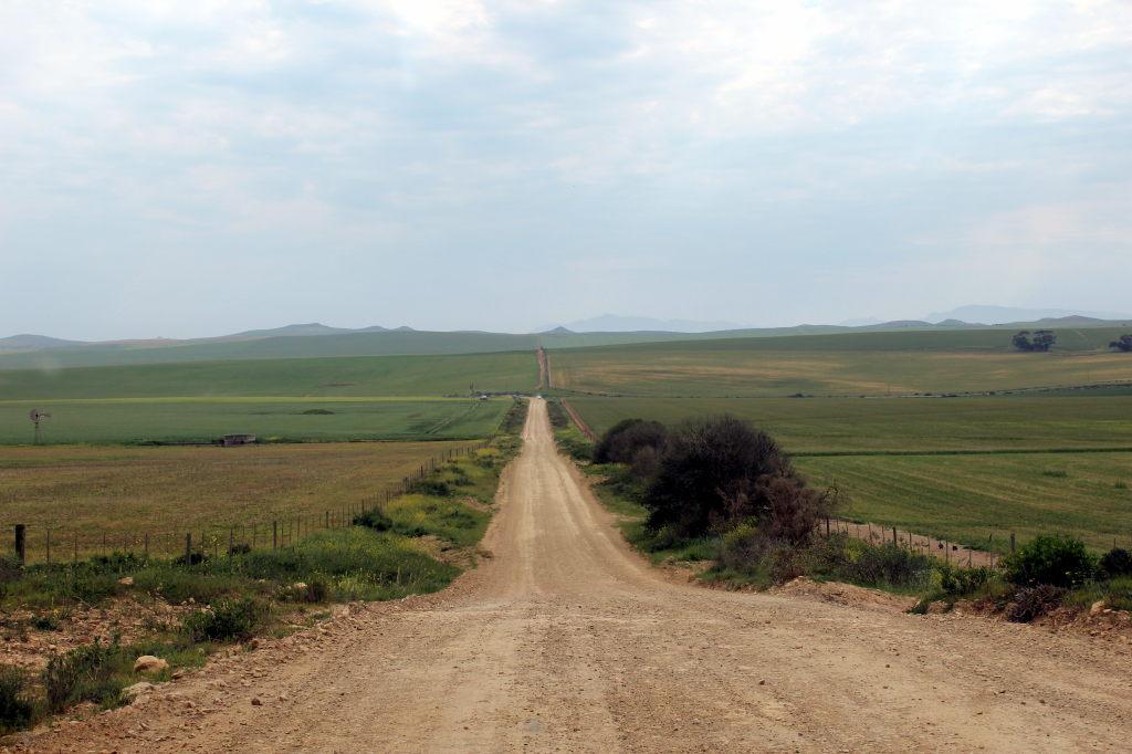Sudafrica_1061_ZA