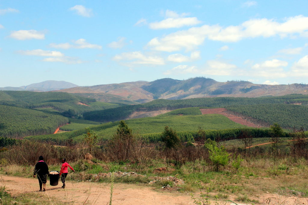 Sudafrica_2216_SZ