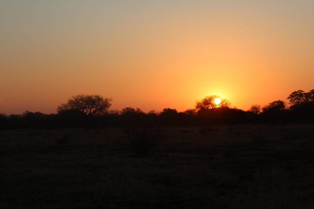 Sudafrica_3129_ZA_KrugerNationalPark