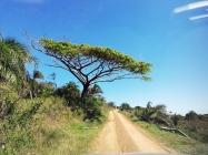 Sudafrica_20181006_142129_ZA_iSimangaliso_EasternShores