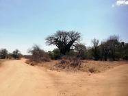 Sudafrica_20181010_130109_ZA_KrugerNationalPark