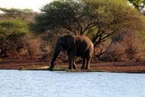 Sudafrica_2342_ZA_KrugerNationalPark